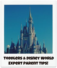 Travel Guide - Toddler Tips for Disney World