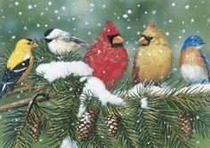 Birds of winter.