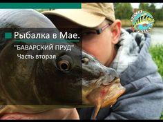 """Рыбалка в Мае. """"БАВАРСКИЙ ПРУД"""" Часть вторая! - YouTube"""