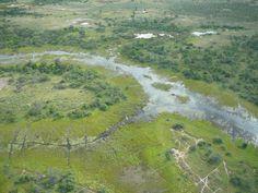 South Africa Wildlife, Okavango Delta, Africa Travel, Mountains, Nature, Naturaleza, Nature Illustration, Outdoors, Bergen