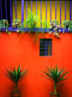 The Beautiful Home Design and Color Blocking Aesthetics of Mexico - Latin America