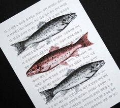 Fishy fun x 3.  Fish trio print on salvaged Korean book page, by CrowBiz.