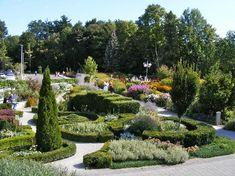 who can escape? - Picture of Toronto Botanical Garden - Tripadvisor Ontario Attractions, Toronto Pictures, Garden Park, Park Weddings, Botanical Gardens, Outdoor Gardens, Greenery, Trip Advisor, Photo Galleries