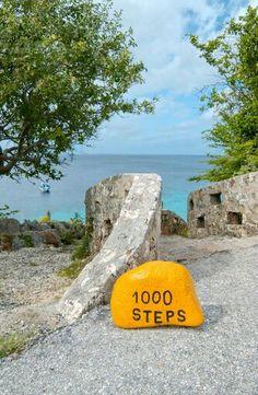 Shore Diving 1000 Steps