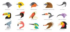 Bird Beak Shapes by Tyler Lang for Audubon. The illustration shows bird bill shapes and notes what type of foods the birds eat. (Great article with it discussing how bill shape and diet are related!)