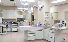 Clinic Interior Design Animal Silhouette And Kids Corner On Pinterest