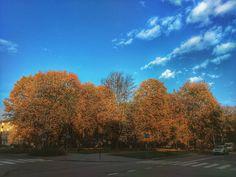 W październiku Zielone już nie takie zielone. Reklamować? #jesień #nowahuta #igersnowahuta #igerskrakow #clouds #atumn #polishatumn #instaphoto