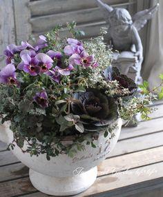 tef*tef*寄せ植え<BR>2015 * no.149 *<BR><BR>『ぶどうももか』 | 寄せ植え | | Junk sweet Garden tef*tef* ガーデニング雑貨・花苗 Flower Arrangement, Floral Arrangements, Table Flowers, Container Gardening, Garden Plants, Flower Pots, Planters, Wreaths, Green