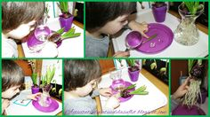 Zambila (2 ani si 7 luni) Spring Activities, Cotton Candy, Kitchen Appliances, School, Diy Kitchen Appliances, Home Appliances, Kitchen Gadgets, Floss Sugar