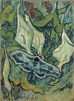 'Great Peacock Moth'  --  1889  --  Vincent van Gogh  --  Dutch  --  Oil on canvas  --  Van Gogh Museum  --  Amsterdam, Netherlands