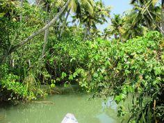 Poovar Backwaters, Kerala