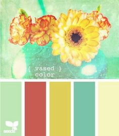 Color Palettes (Ideas to set off blue kitchen tools )