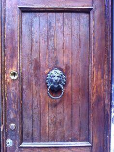 Porta puxador leão Veneza Itália