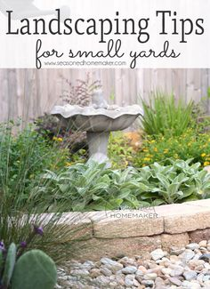 Landscaping Tips for Small Yards Small Yard Landscaping: Small yards are a unique landscaping dilemma. Overgrown plants can overwhelm a small setting. I have 6 Landscaping Tips for Small Yards that will make Landscaping Easy. Backyard Ideas For Small Yards, Small Backyard Gardens, Small Backyard Landscaping, Landscaping Tips, Small Gardens, Outdoor Gardens, Landscaping Software, Nice Backyard, Landscaping Contractors