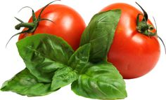 This PNG image was uploaded on January pm by user: playtall and is about Bush Tomato, Diet Food, Eggs, Food, Foods. Sliced Tomato, Tomato Juice, Tomato Salad, Tomato Vegetable, Tomato Garden, Vegetable Pizza, Salad Bar, Cool Wallpaper, Cherry Tomatoes