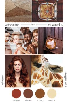 Color Quarterly - 2nd Quarter 2020 – eColorWorld Colour Schemes, Color Trends, Popular Colors, Season Colors, Drawing Reference, Stitches, Fashion Trends, Collection, Color Schemes