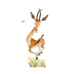 Meet the Animals on Behance ★ Find more at http://www.pinterest.com/competing/