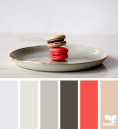 { color serve } image via: @sindstudio The post Color Serve appeared first on Design Seeds.