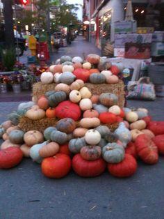 Boise Farmers Market been here it was SO much FUN!