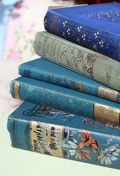 Des livres bleus.