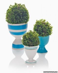 """See the """"Simple Centerpiece"""" in our Easy Centerpieces gallery"""
