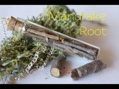 Mandrake Root : Harry Potter Potion # 10