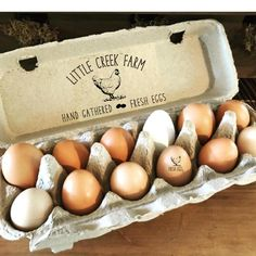Farmhouse Egg Carton Stamps For Carton Top, Chicken Coop Farm Fresh Egg Stamps, Chicken Gift Idea, Large Personalized Eggs Rubber Stamp by SouthernPaperAndInk on Etsy Diy Chicken Coop Plans, Backyard Chicken Coops, Building A Chicken Coop, Chickens Backyard, Backyard Farming, Egg Stamp, Farm Name, Chicken Runs, Hillbilly