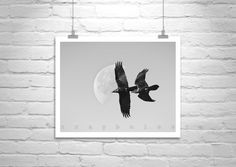 Raven Bird Photography, Black and White, Fine Art Photography, Nature Photography, Bird in Flight, Moon Picture, Wall Art, Wildlife Art