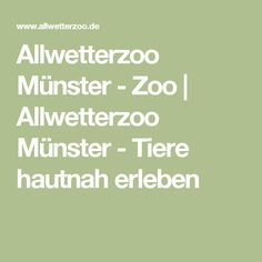 Allwetterzoo Münster - Zoo   Allwetterzoo Münster - Tiere hautnah erleben