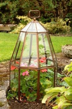 Turn a thrift store light fixture into a cool terrarium indoors or outdoors!  For the rosemary in the winter?