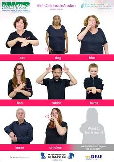 Free Auslan Posters - National Week of Deaf People Sign Language Book, Sign Language Phrases, Sign Language Alphabet, Body Language, Australian Sign Language, British Sign Language, Science Education, Physical Education, Special Education