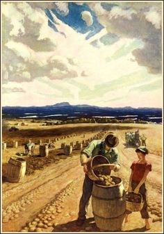 """Aroostook Potato Harvest"" (c. illustration from ""Trending Into Maine,"" by Kenneth Roberts NC Wyeth Jamie Wyeth, Andrew Wyeth, Art And Illustration, Nc Wyeth, Art Occidental, Farm Art, Inspiration Art, Art Graphique, Western Art"