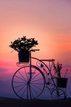 Bicycle Silhouette at Sunset Nature Wallpaper, Wallpaper Backgrounds, Wallpaper Ideas, Silhouette Fotografie, Beautiful World, Beautiful Images, Beautiful Sunset, Cute Images For Dp, Beautiful Photos Of Nature