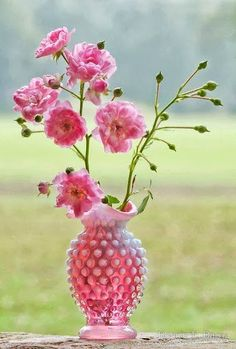 675 best pink green images on pinterest ideas planting flowers pink roses in a vintage fenton pink hobnail vase mightylinksfo