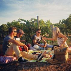Picnics brews and wine at Blackdog Brewery in Glenrowan Tourism Website, Major Events, Wine And Beer, Picnics, Brewery, Things To Do, Victoria, Adventure, Couple Photos
