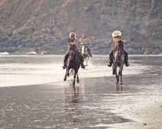 Horseback Riding w Blue
