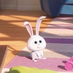 Emoji Pictures, Cute Cartoon Pictures, Cartoon Profile Pics, Cartoon Pics, Cartoon Wallpaper Iphone, Cute Disney Wallpaper, Cute Cartoon Wallpapers, Snowball Rabbit, Cute Bunny Cartoon