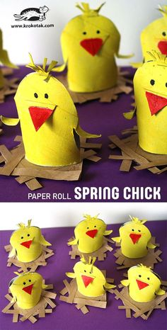 PAPER ROLL SPRING CHICK