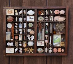 Excited to share this item from my shop: Organized Beach - Found Object Assemblage Printers Tray Shell Collection, Nature Collection, Rock Collection, Collection Displays, Letterpress Drawer, Illustrations Vintage, Printers Drawer, Found Object Art, Small Bottles