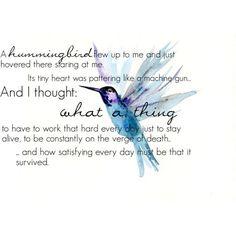 Hummingbird Quotes And Sayings. Hummingbird Spiritual Meaning, Hummingbird Symbolism, Hummingbird Tattoo Meaning, Love Birds, Beautiful Birds, Beautiful Castles, Hummingbird Quotes, Tiny Heart, Beauty Quotes