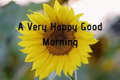 A collection of Beautiful Good Morning Images, beautiful good morning pictures, whatsapp good morning images and quotes. Sweet Good Morning Images, Morning Images In Hindi, Good Morning Picture, Morning Pictures, Good Morning Quotes, Friends Image, Happy Birthday Images, Cool Baby Stuff, Picture Quotes