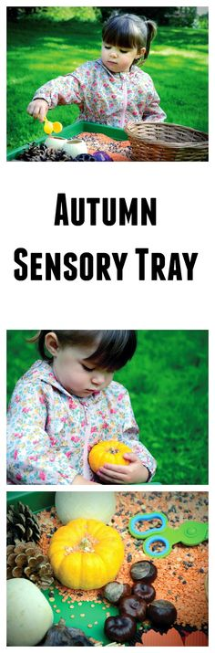 Autumn sensory tray #LearningIsFun