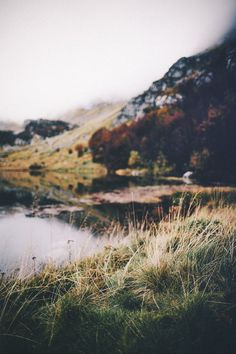 Wilderness Wanderlust :: Adventure Outdoors :: Escape to the Wild :: Back to Nature :: Mountain Air :: Woods, Lakes + Hiking Trails :: Free your Wild :: See more Untamed Wilderness Photography + Inspiration (Outdoor Wood Adventure) Photo Trop Belle, Beautiful World, Beautiful Places, Adventure Is Out There, The Great Outdoors, Wonders Of The World, Wilderness, Landscape Photography, Beautiful Nature Photography