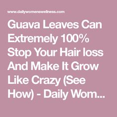 Guava Leaves Can Extremely 100% Stop Your Hair loss And Make It Grow Like Crazy (See How) - Daily Women Wellness