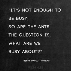 """""""It's not enough to be busy; so are the ants. The question is: what are we busy about?"""" - Henry David Thoreau"""