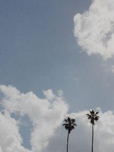 California Dreamin' | maiasmith | VSCO Grid