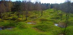Verboden bossen rond Verdun.