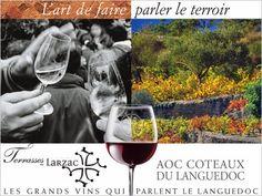 En Languedoc les Terrasses du Larzac deviennent une AOC