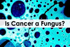 Tulio Simoncini is a former Italian oncologist in Rome who developed a theory that all cancer is caused exclusively by a fungus called Candida ...