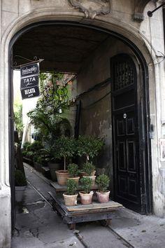 Un patio con jardín en Buenos Aires por jardín Pablo Chiappori-secreto con un salón de té, una floristería, cafetería, un bar de vinos y una tienda de artículos para el hogar. Gorriti 4864, Buenos Aires